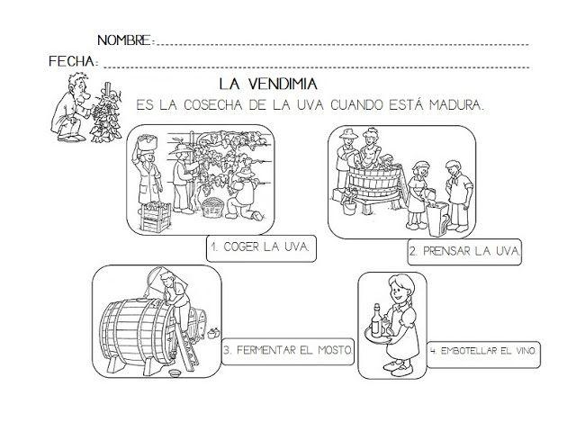 Circuito Productivo Del Vino : Creciendo felices la uva y vendimia otoño