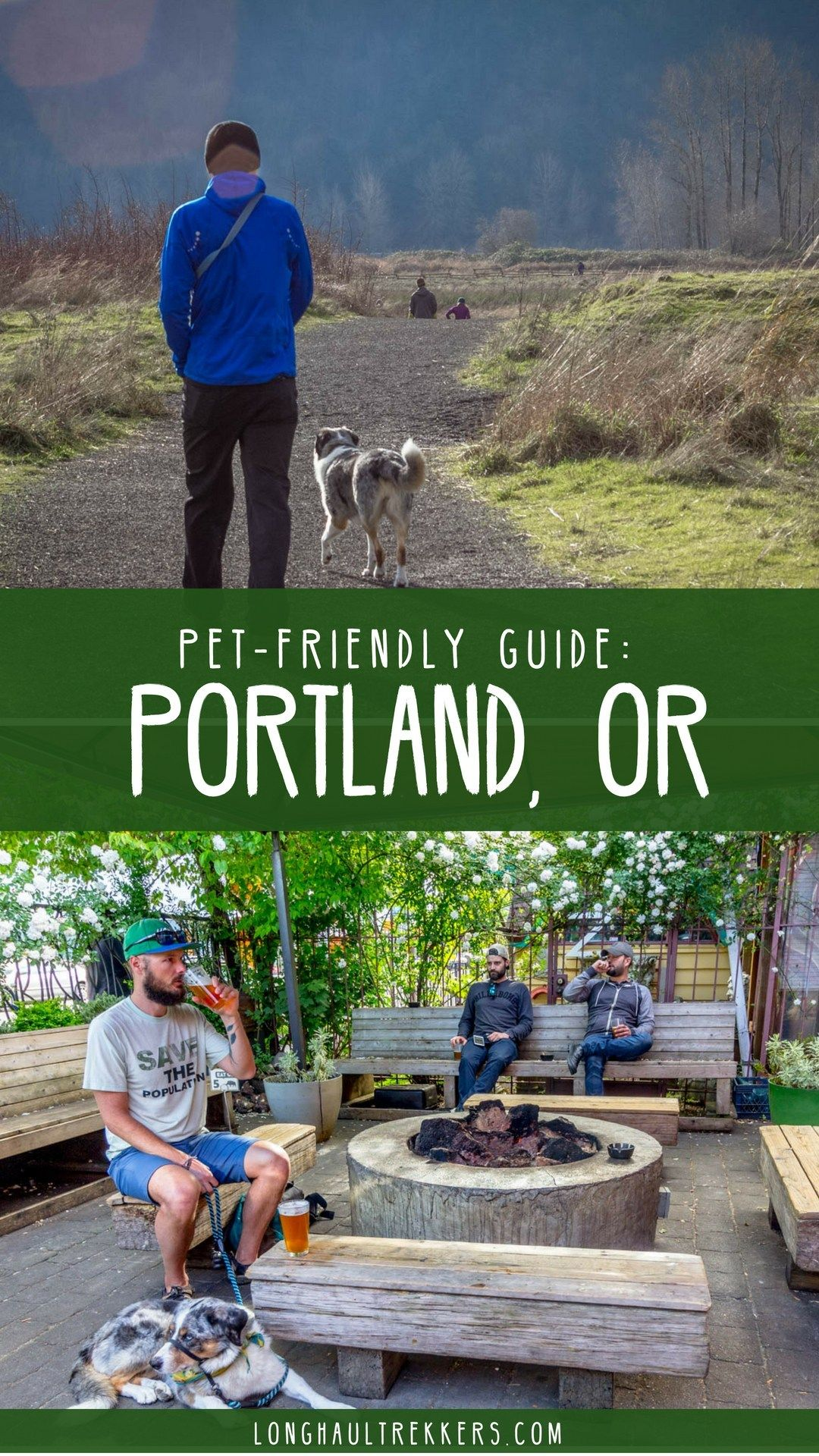 Dog-Friendly Portland, Oregon: Our Favorite Places to Sit