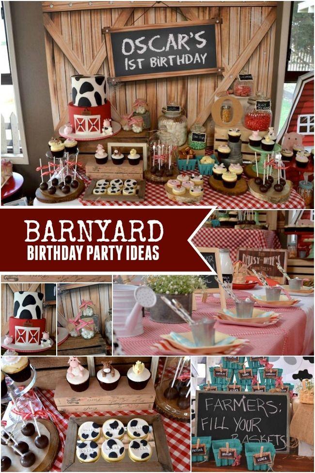 Down on the Farm: A Boy's Rustic Barnyard 1st Birthday ...