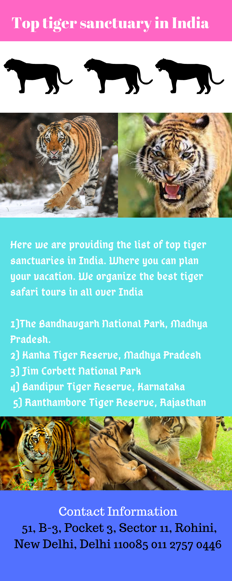 Here we are providing the list of top tiger sanctuaries in