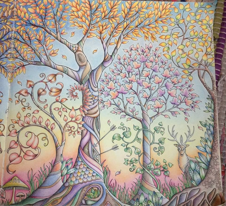 Coloured By Natalie Tame Enchanted Forest Coloring Enchanted Forest Coloring Book Johanna Basford Enchanted Forest