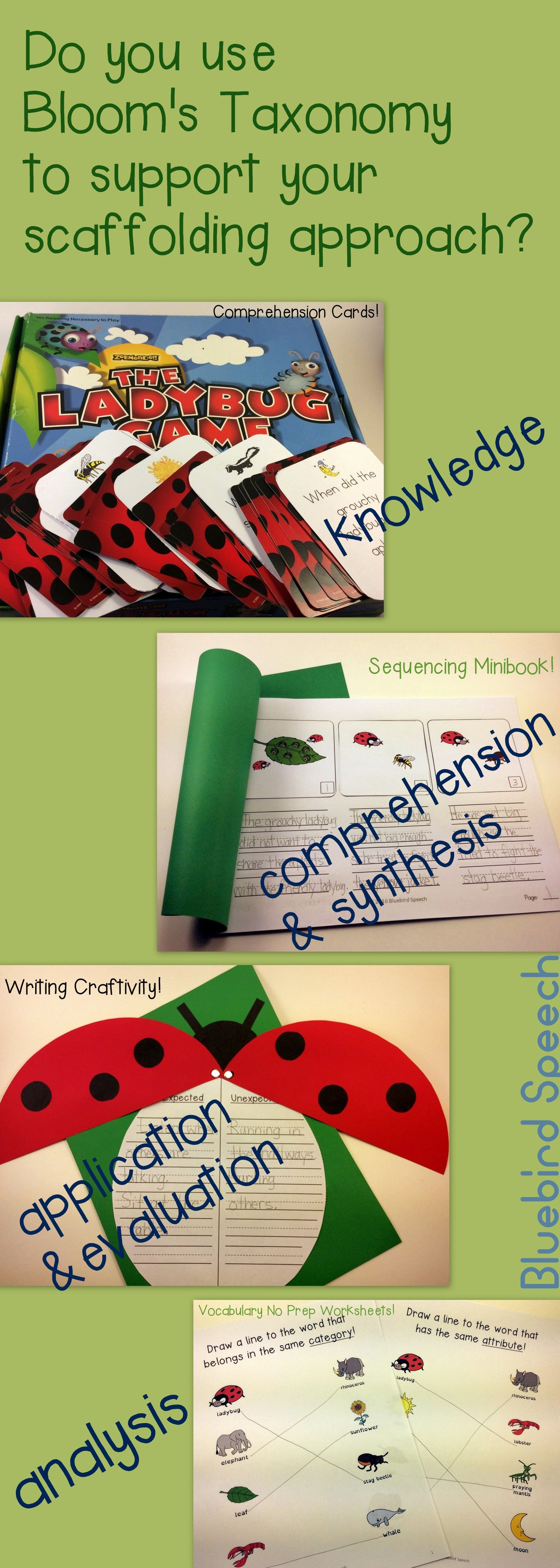 The Grouchy Ladybug Activities And Book Companion For