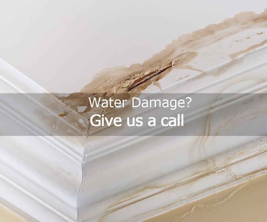 Don't let water damage ruin your day, let the experts handle it.