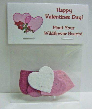 Amazon.com : Valentine Flower Seed Heart Handout