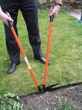 lawn care tools tested and reviewed by fred in the shed lawn and