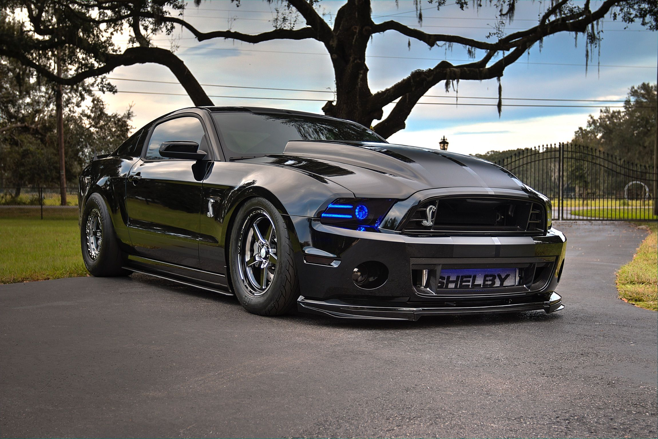 Shelby Gt500 1204 Horsepower At The Tire Follow On Instagram