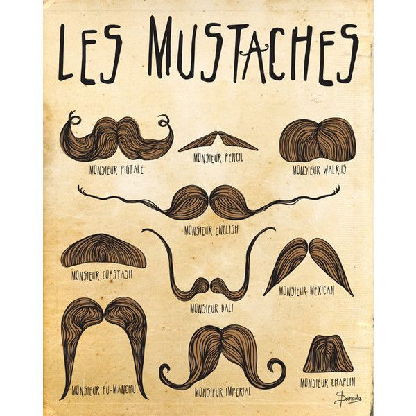 Mustache Print Art, Digital Illustration Wall Decor, Mustaches Drawing...  ($15