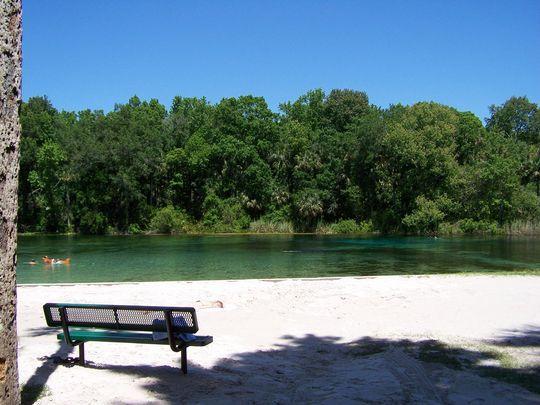 Alexander Springs Rec Area Fl Florida Springs Rv Parks In Florida Ocala National Forest