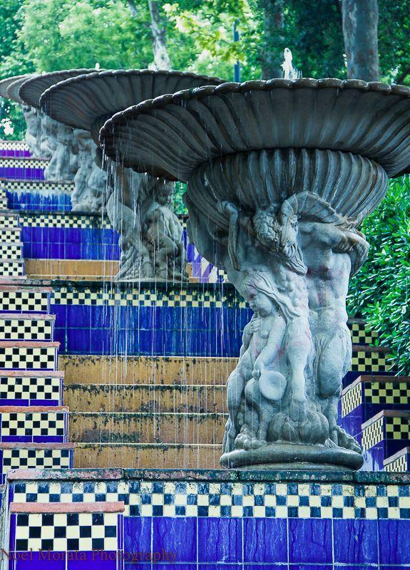 Montjuic parks and botanic gardens in Barcelona #botanicgarden