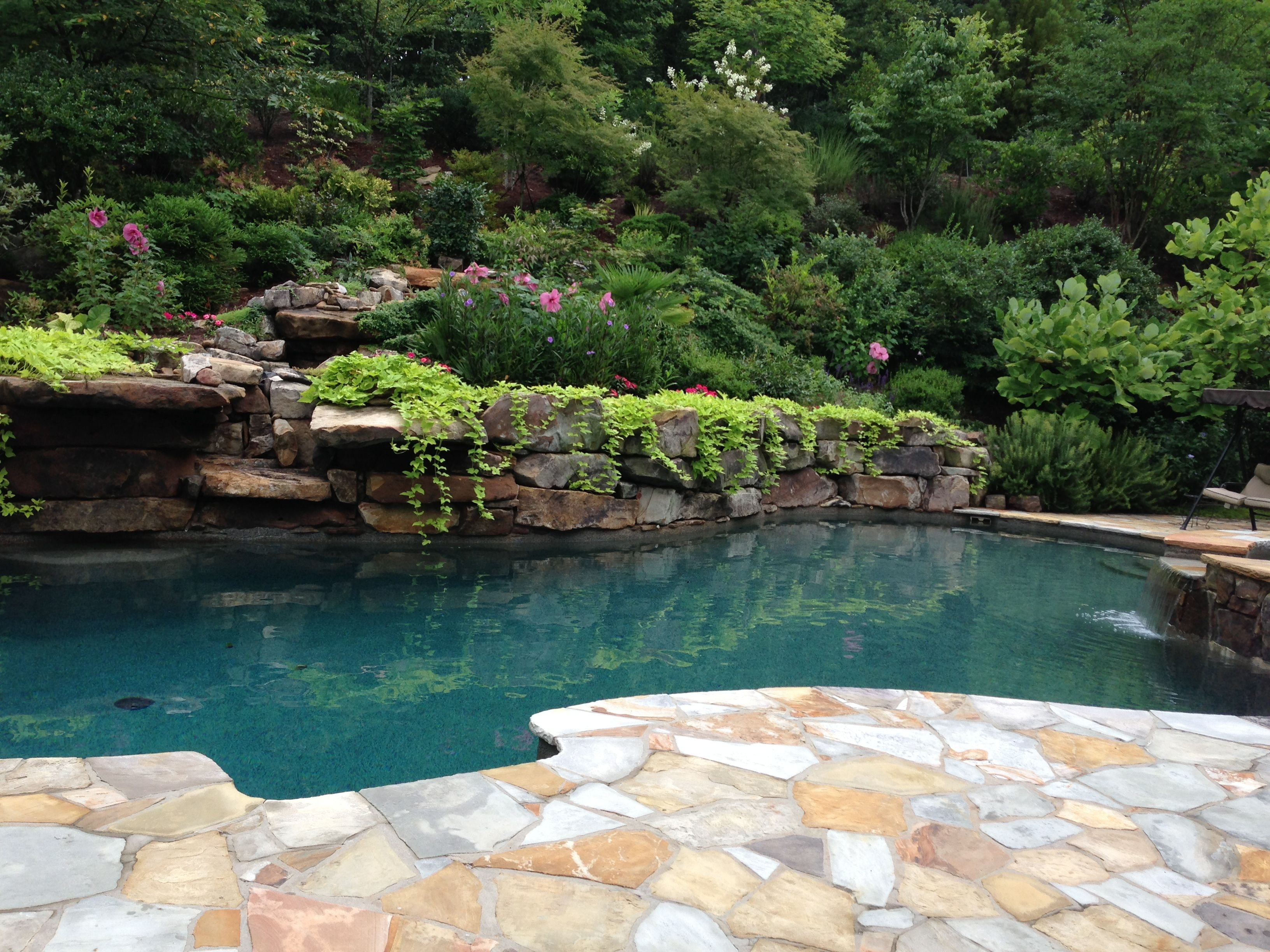 Superior Fancy Pool! Raised Hot Tub And A Cascading Waterfall.