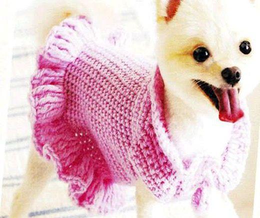 Pin von NStahova Stahova auf Одежда для животных | Pinterest ...