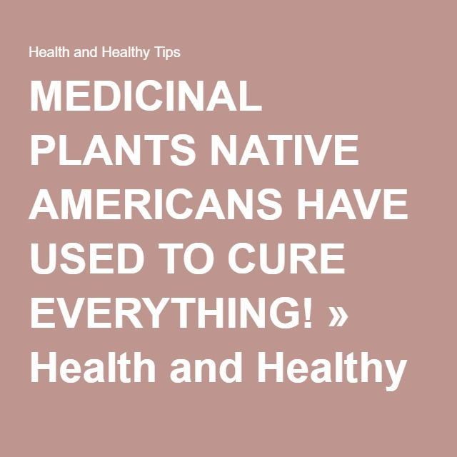MEDICINAL PLANTS NATIVE AMERICANS HAVE USED TO CURE EVERYTHING! » Health and Healthy Tips