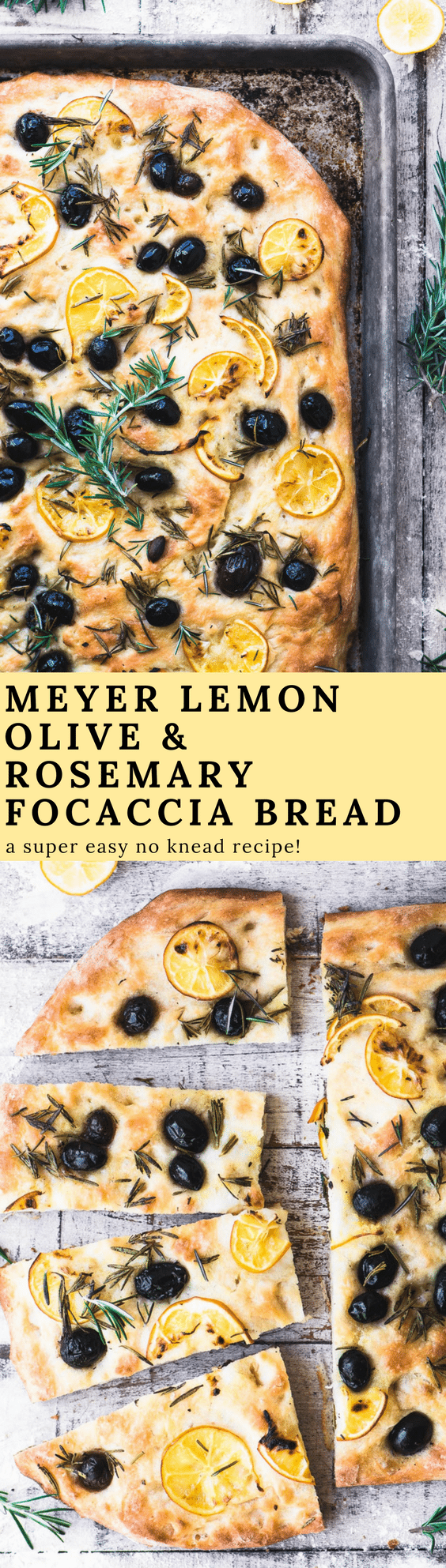 Rosemary and Olive No Knead Focaccia Bread with paper thin ...