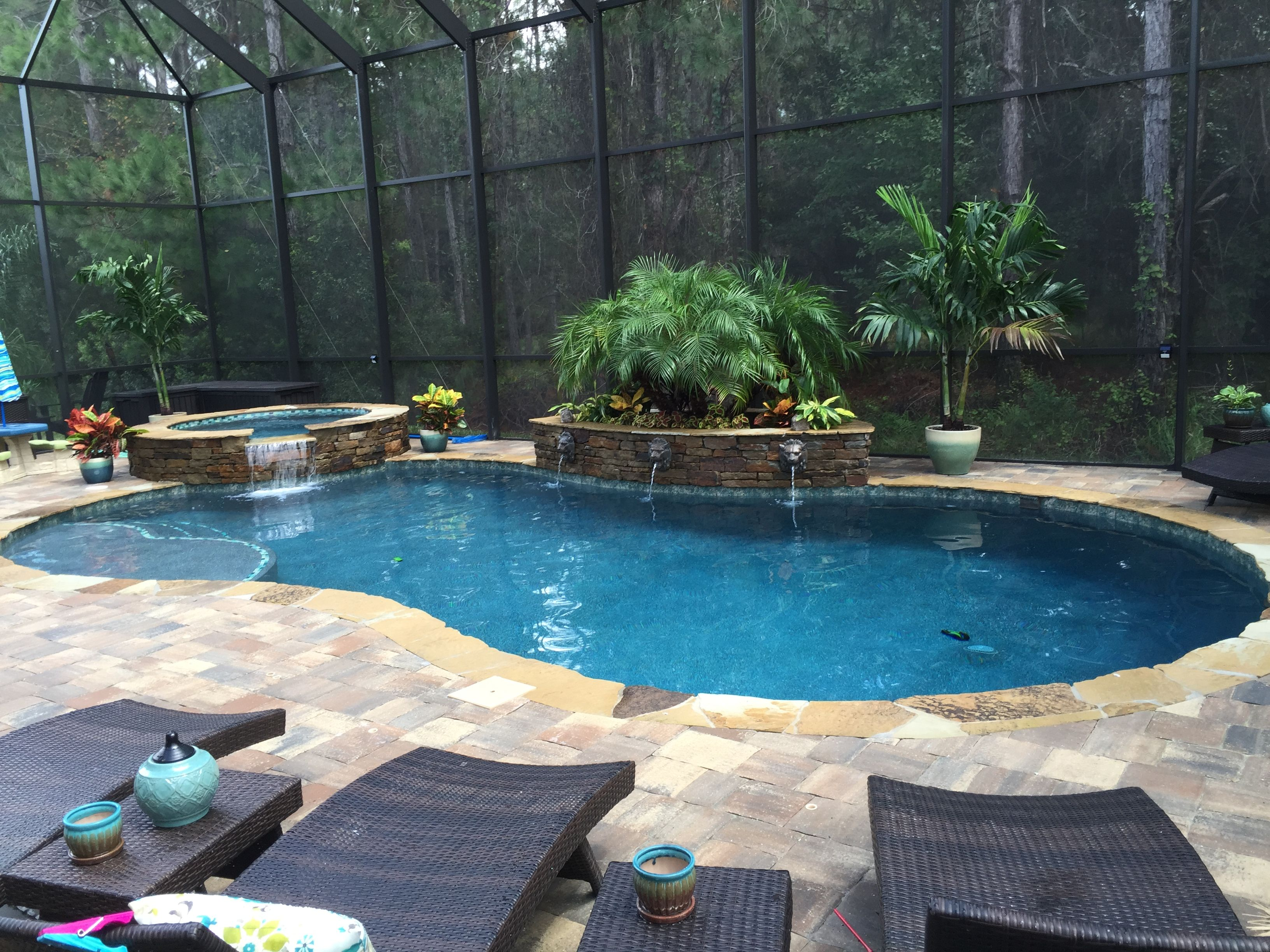 Custom Pool Spa Screen Enclosure By Poolside Designs Pool Patio Backyard Pool Custom Pools