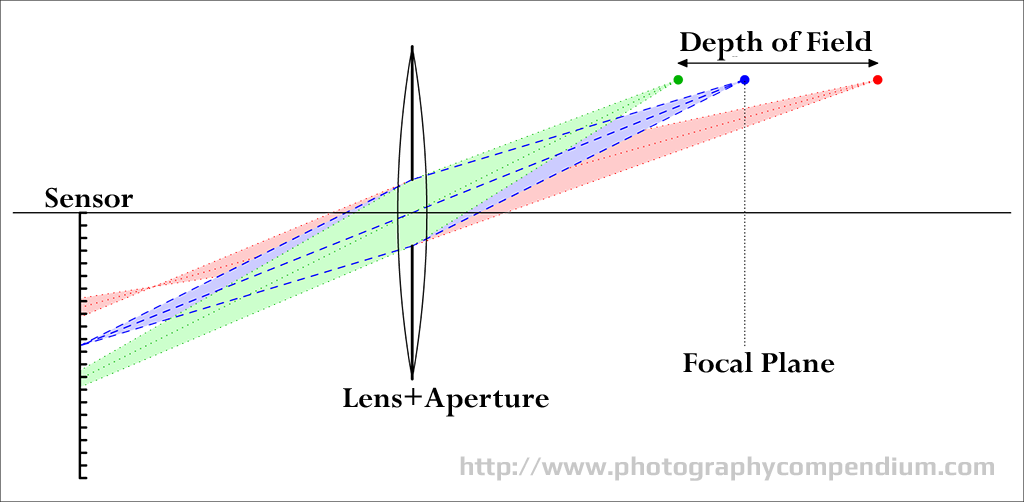depth of field photography comparison - Google Search