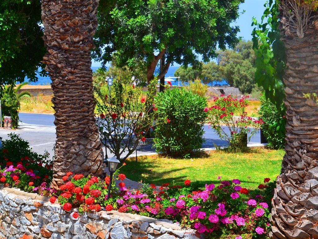Греция, Крит 27 900 р. на 8 дней с 01 июня 2017 Отель: amnissos ...