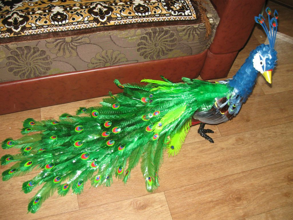 Peacock of plastic bottles We decorate our