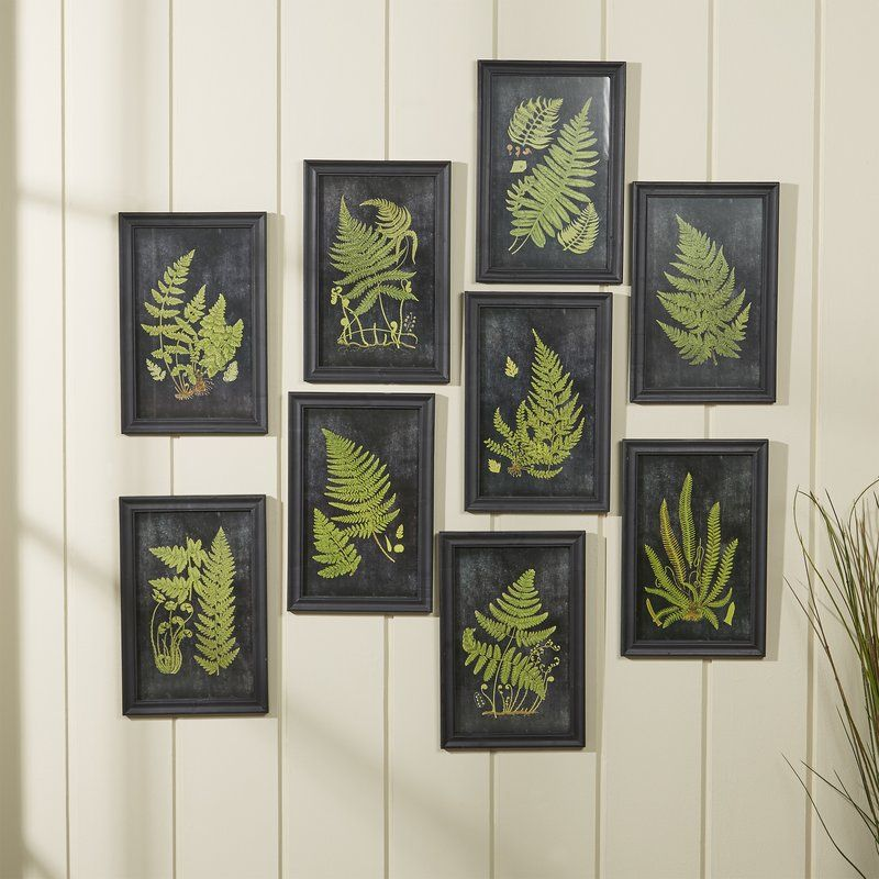 Fern botanical 9 piece framed graphic art set reviews birch lane