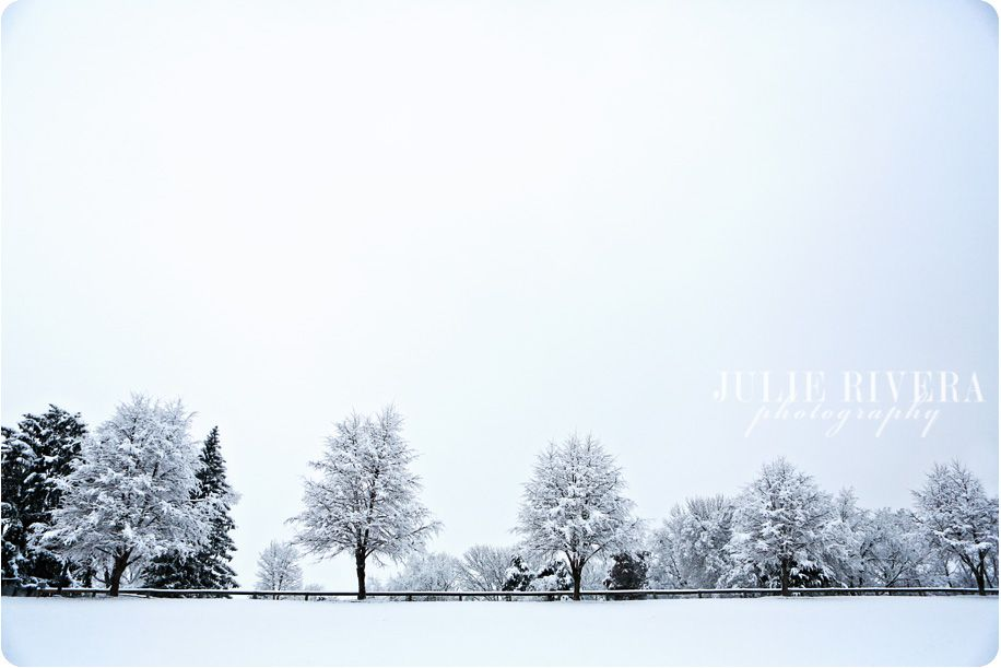 Beautiful winter landscape...Julie Rivera Photography