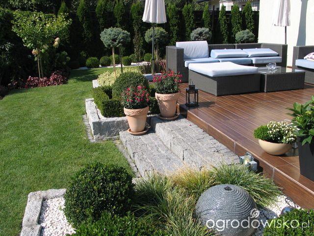 Ogr d tosi strona 334 forum ogrodnicze ogrodowisko for Jardineria al aire libre casa pendiente