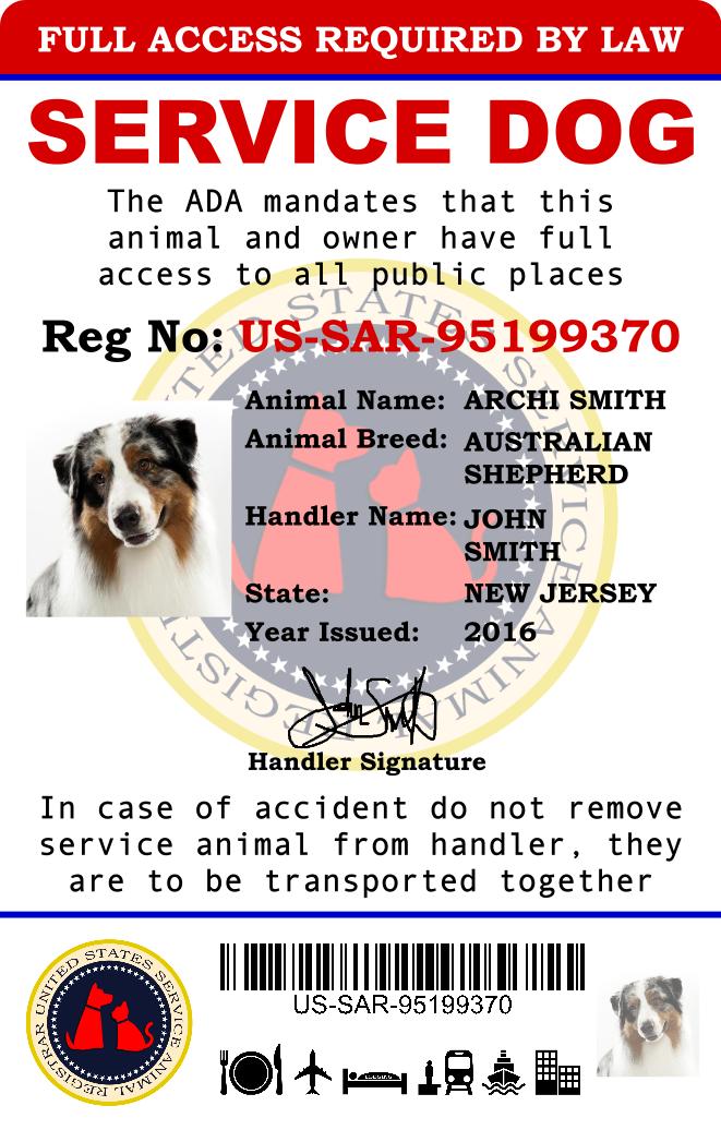 Largest Service Dog Registry 2016 Register Now Service Dogs Service Dog Registration Dog Id