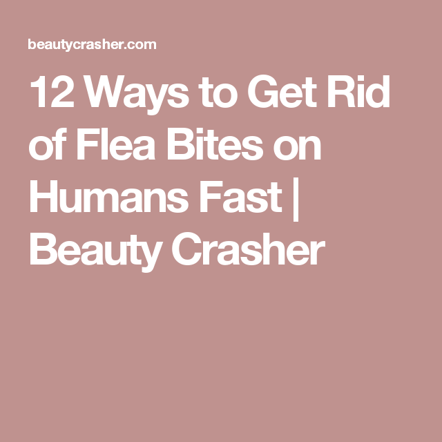 How To Get Rid Of Flea Bites In Humans