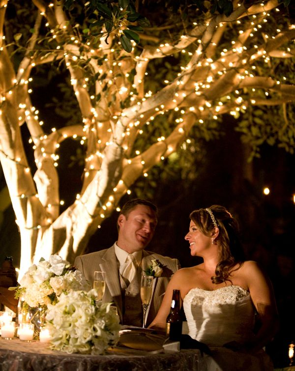 outdoor wedding lighting trees - Google Search | wedding plans i ...