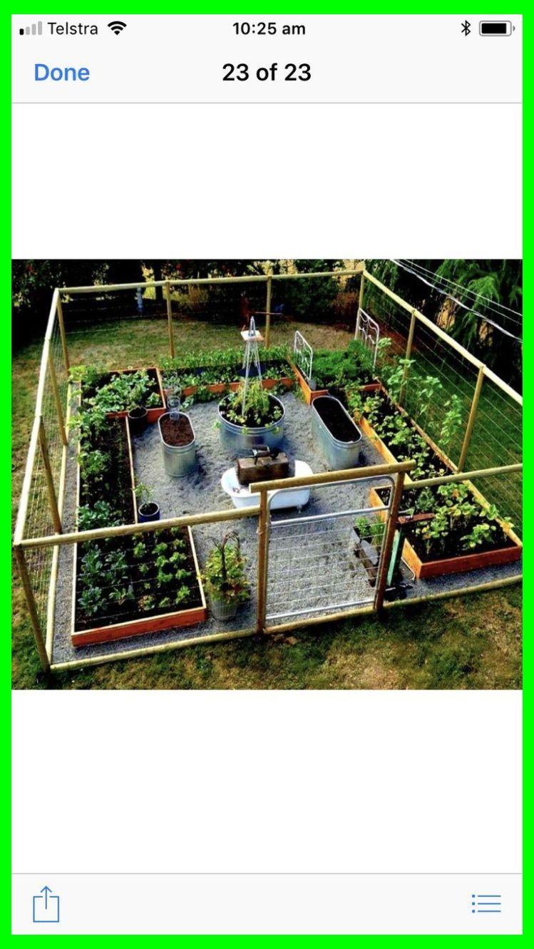 Layout Idea Vegetable Garden Ideas Layout Vegetable Garden Design Raised Vegetable G Garden Layout Vegetable Garden Design Layout Vegetable Garden Design