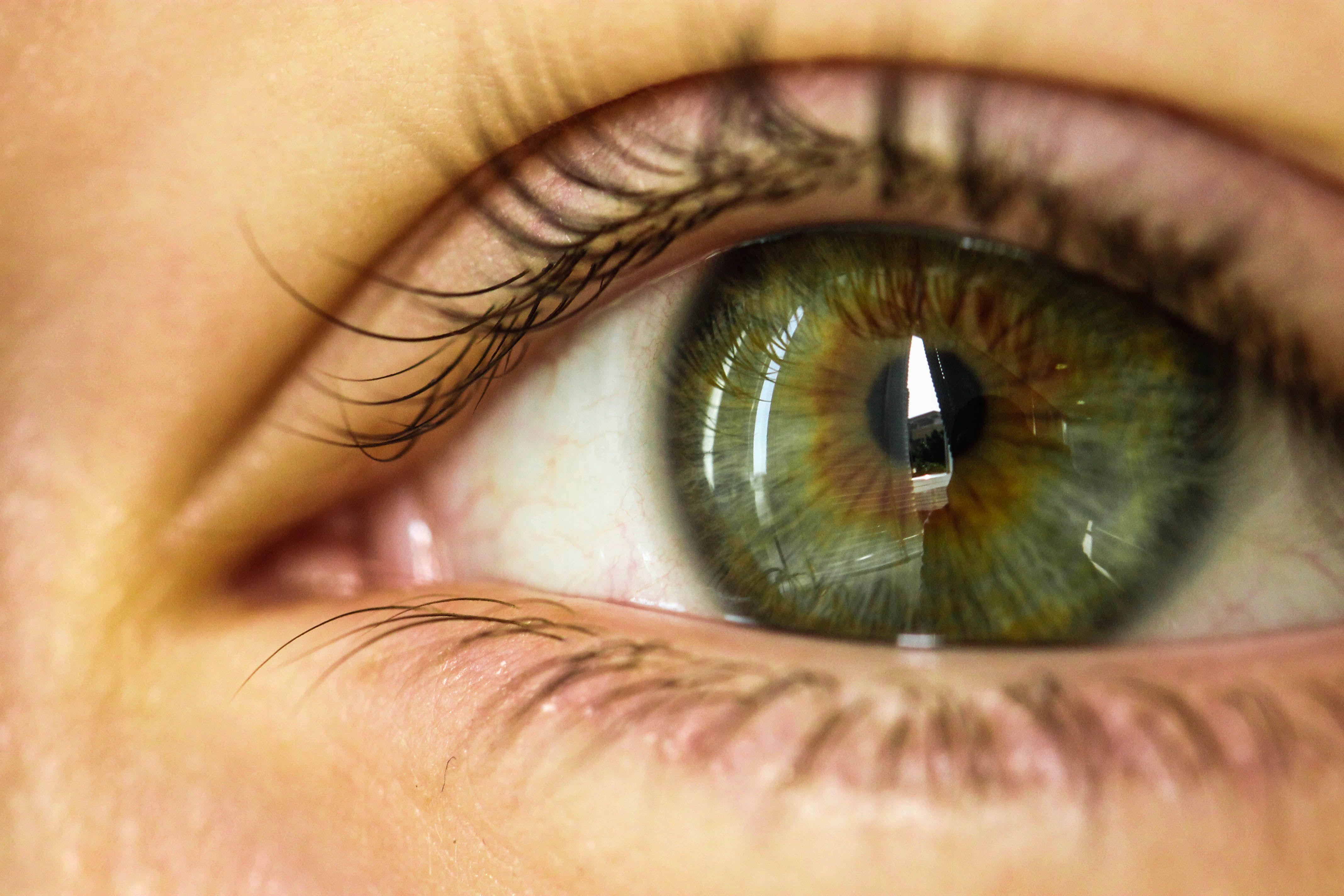 если первый серо зелено карие глаза картинки стандартного испанского общепита