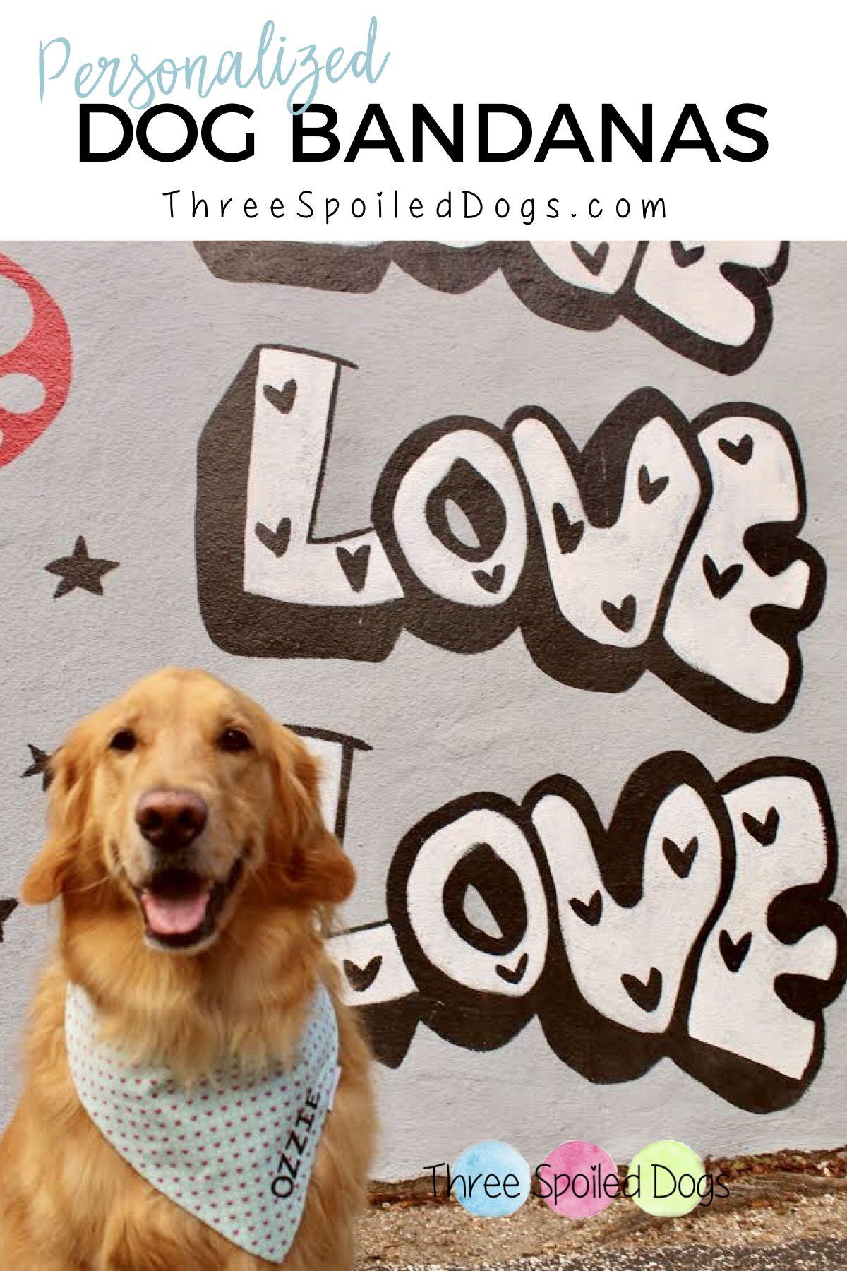 Personalized Dog Bandana For Boys Custom Neckwear For Pets