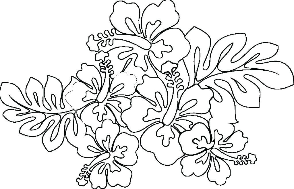 Fantastic Flower Coloring Pages For Adults To Print Hawaiian
