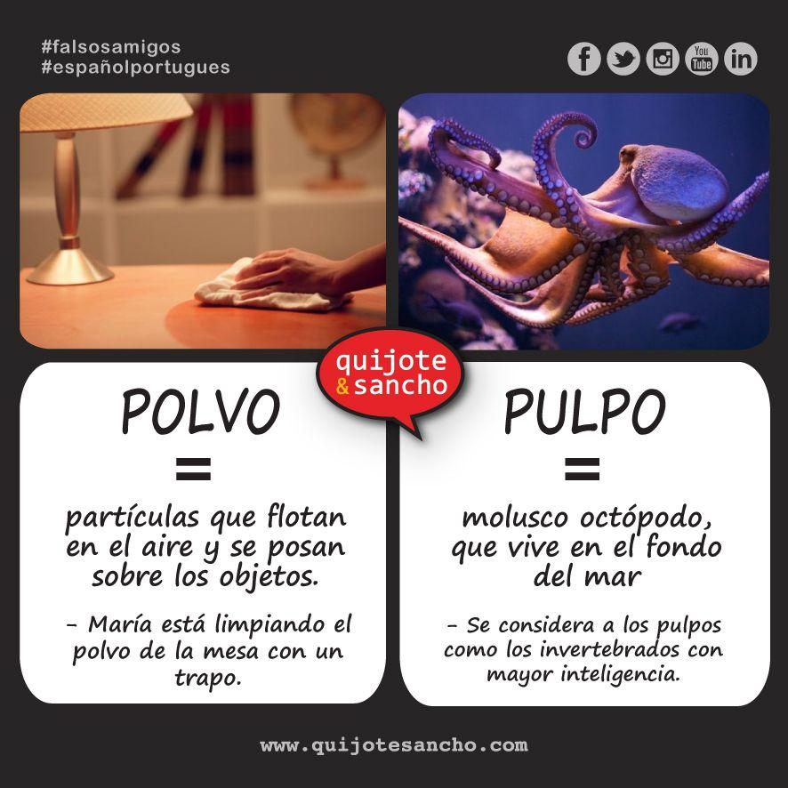 PORTUGUÉS / ESPAÑOL polvo. FALSOS AMIGOS PORTUGUÉS