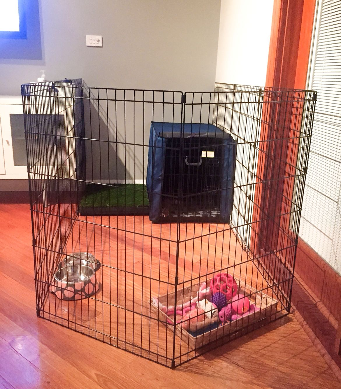 Sophie S Bedroom Puppy Set Up Play Pen Australian Multi Gen Labradoodle Puppy Pens Puppy Crate Dog Playpen