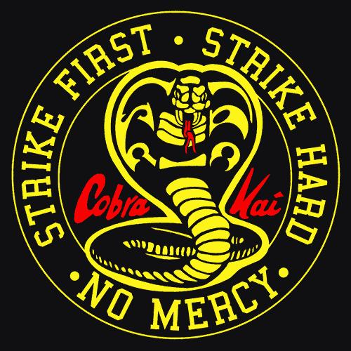 I Finished Cobra Kai Season 3 Is Coming Strike Fist Strike Hard No Mercy Karate Kid Cobra Kai Dojo Karate Kid Cobra Kai