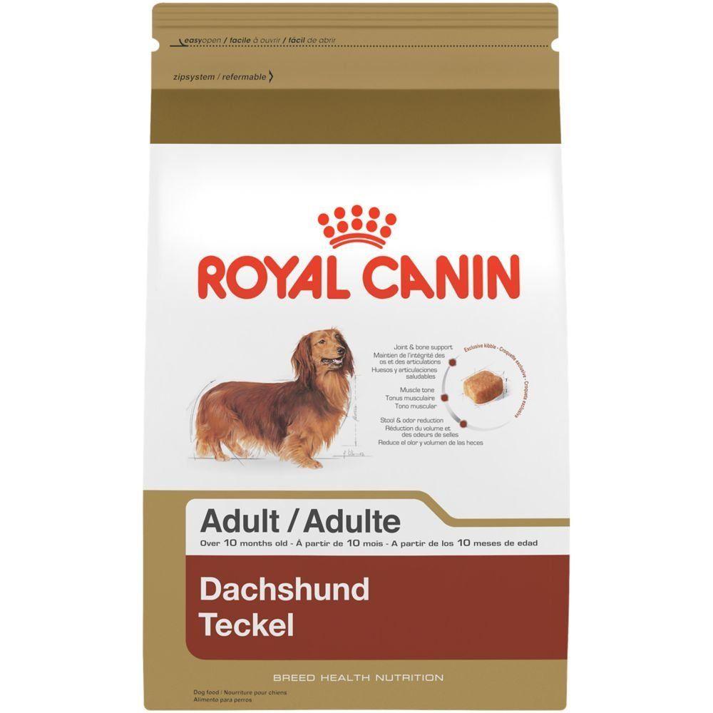 Royal canin breed health nutrition dachshund adult dry dog