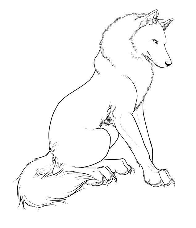 касается сидящий волк рисунок карандашом сегодняшний день это