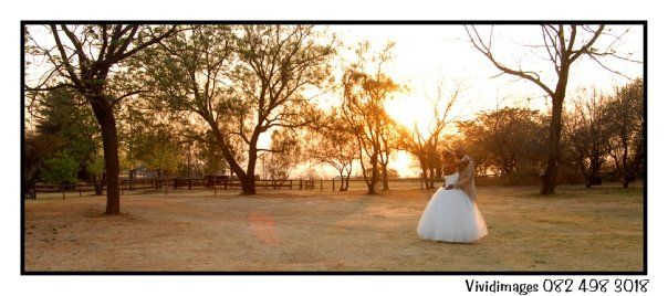 www.vividimages.co.za