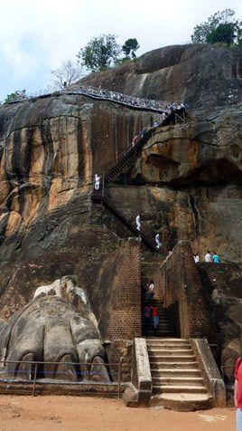 """Sigiriya Felsen, der auch ,,Löwen-Felsen"""" genannt wird, da sich auf dem Plateau an der nördlichen Schmalseite des Felsens die Überreste eines Löwentors befinden. Von dem riesigen Löwenkopf, durch dessen Maul früher der letzte, steilste Teil des Aufstiegs begann, sind nur die zwei mächtigen Tatzen übrig. Als wir den  200 m hohen Felsen über eine eiserne Wendeltreppe erreichten, gelangten wir zu den 1.500 Jahre alten Fresken der Wolkenmädchen, die unter einem Felsüberhang geschützt verborgen…"""