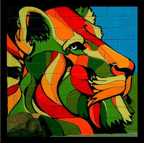 Natty Garden Lion Photo By Trevor Brown Www.trevorbrownonline.com