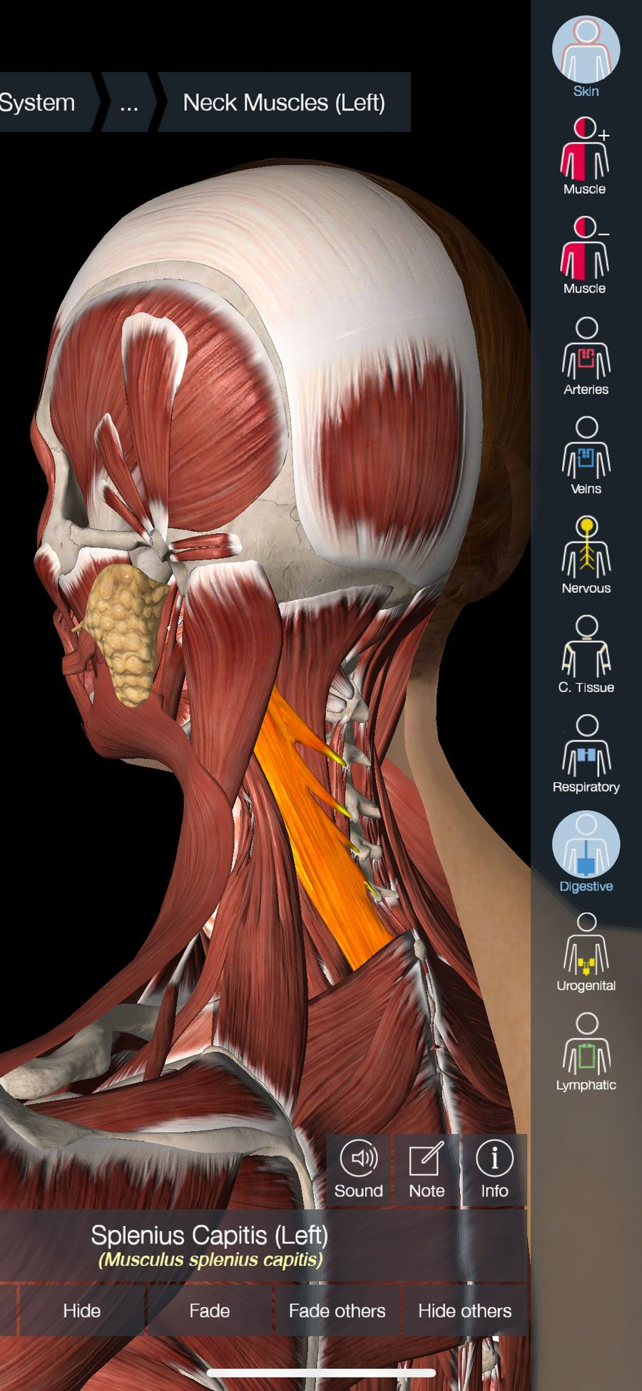 Essential Anatomy 5 Educationmedicalappsios Top Iphone Game