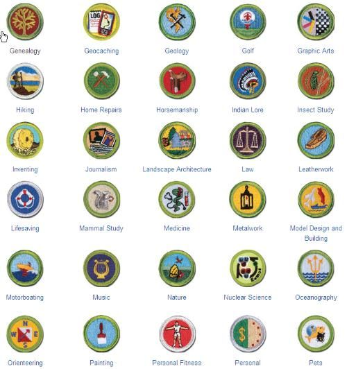 public merit badge list - boy scout troop 142 (bardstown, kentucky