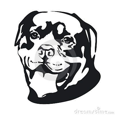 Dog Rottweiler Fun Craft Ideas Pinterest Stencils