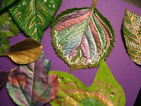 Cool project from http://www.kiwicrate.com/projects/Leaf-Doodling-With-Metallic-Pens/242: Leaf Doodling With Metallic Pens