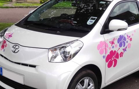 Hippy Hibiscus Special Car Stickers Hippy Motors Car Stickers - Vinyl transfers for cars