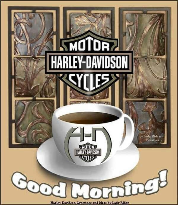 "Pin by Lorri Talys on HD ""GOOD MORNING""   Harley davidson shop, Harley davidson quotes, Harley bikes"
