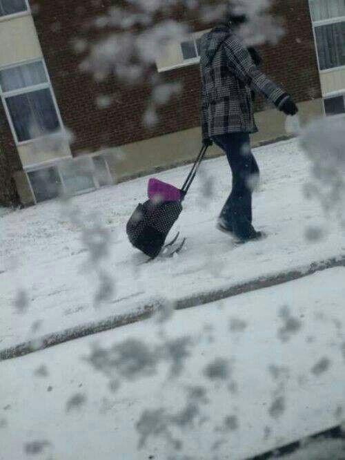 Luggage skis?!?!