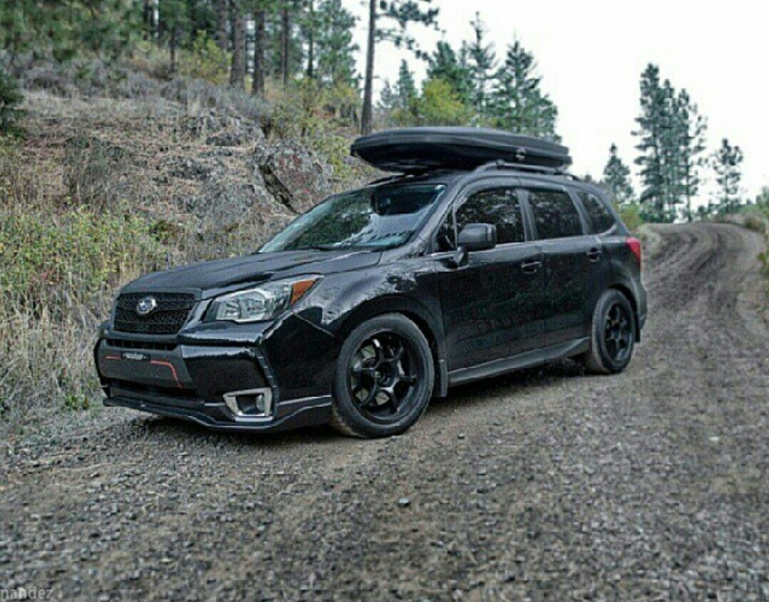 Forester Friday : subaru | wouldn't mind this or THAT ...