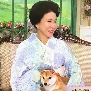 十朱幸代さんと愛犬キララちゃん...