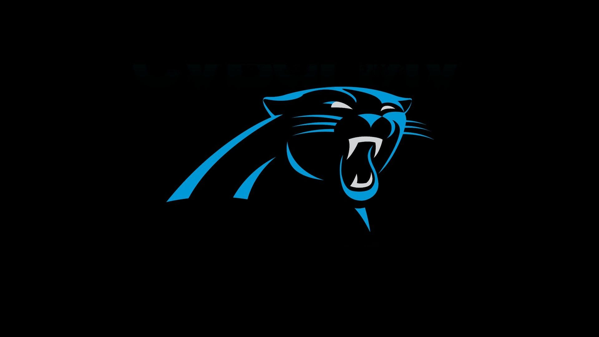 Carolina Panthers Wallpaper Hd