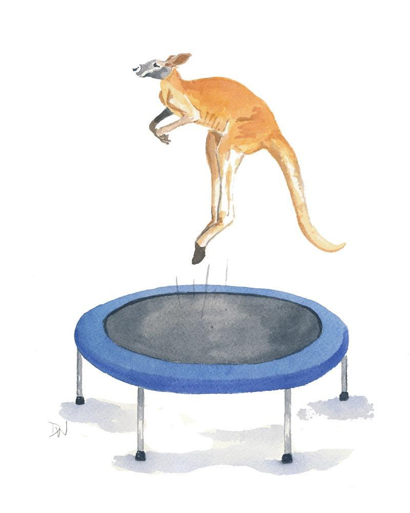 List Of Synonyms And Antonyms Of The Word: Trampoline Art